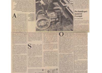 art 1984 FST schtroumpf